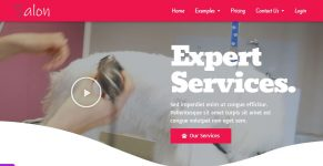 dog-groomers-website-template
